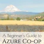 A Beginner's Guide to Azure Standard