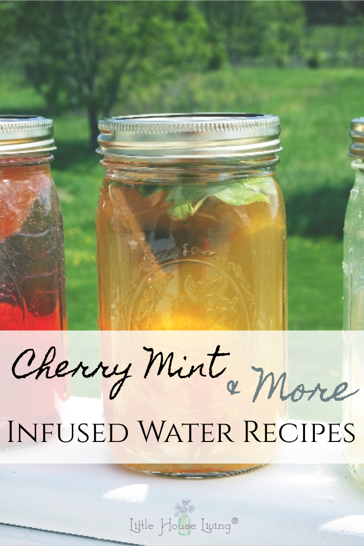 Looking for a delicious summer treat to quench your thirst without any added sugar? This Cherry Infused Water and these other Infused Water Recipes will be perfect! Use in-season fruits and herbs to make a tasty beverage.