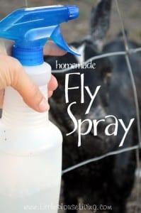 Home Made Fly Spray