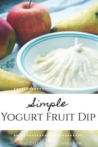 This Yogurt Fruit Dip recipe is a light and refreshing treat to serve alongside fresh fruit. With only 3 ingredients, it's a simple and delicious dessert or snack your family will enjoy any time of year! #simplefruitdip #yogurtfruitdip #homemadefruitdip
