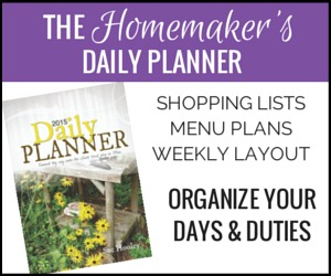 Daily Planner 300x250 border