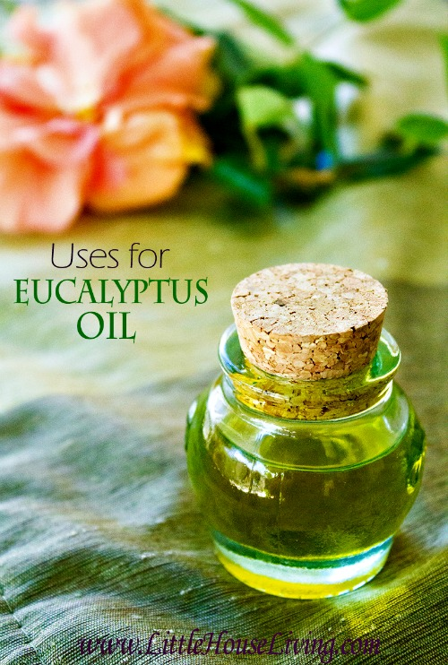 Eucalyptus Oil Uses