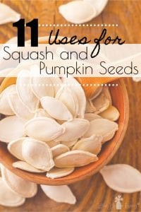 Squash comes in many varieties and have a slew of health benefits. Check out these Uses for Squash Seeds to begin taking advantage of all this fruit has to offer! #squashseeds #pumpkinseeds
