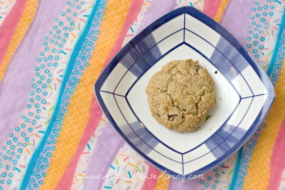 Baked Homemade Oatmeal Cookie Mix