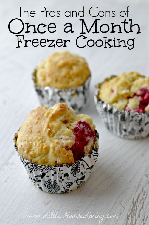 Post image for The Pros and Cons of Once a Month Freezer Cooking