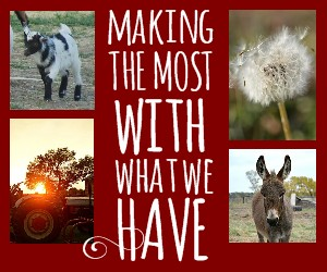 Making the Most With What We Have … The Series!