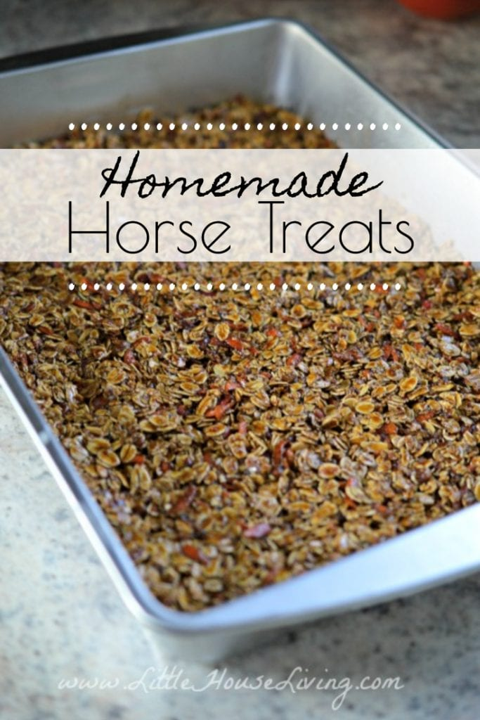 How To Make Horse Treats Homemade Horse Treats Little House Living