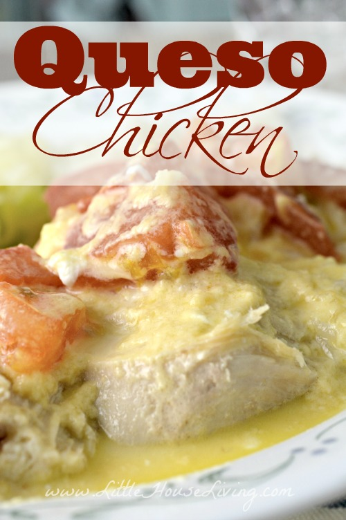 This Queso Chicken recipe is quick and delicious and is sure to become a new family favorite in your house! #queso #chicken #dinner #recipe
