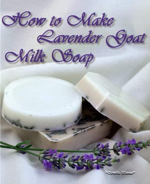 Easy Lavender Goats Milk Soap