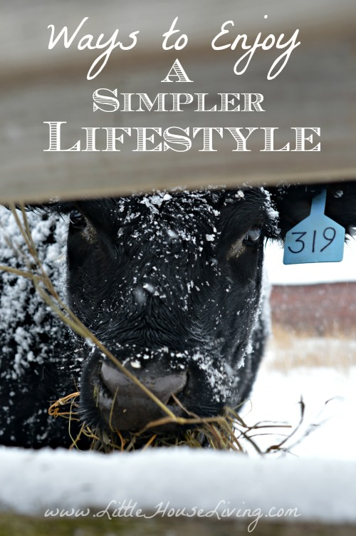 Ways to Enjoy a Simpler Lifestyle - Little House Living
