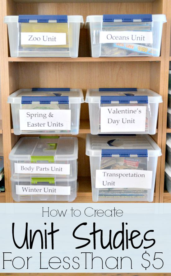 Are you planning for the new school year? Unit studies are a great way to teach little ones about different topics while having fun! Here are some easy ways you can create simple unit studies for less than $5! #homeschooling #unitstudies #homeschoolingonabudget