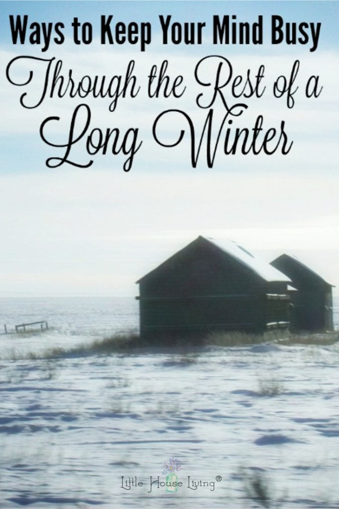 If you are looking for some projects or activities that can keep your mind busy during these last few weeks of winter, I have some fun suggestions for you today. #longwinter #winterboredombusters #wintersanity #winter