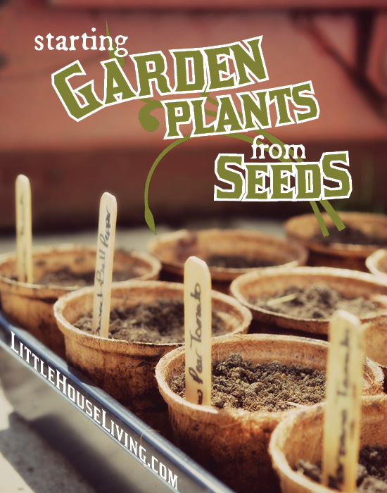 Getting ready to start a garden? Don't forget about starting some of your long season garden plants from seed!
