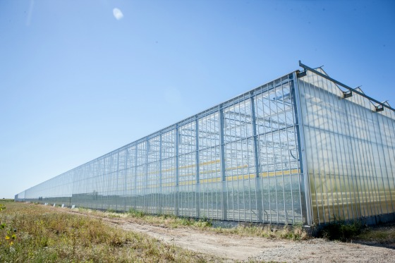Bushel Boy Greenhouses