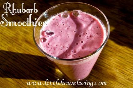 rhubarbsmoothie