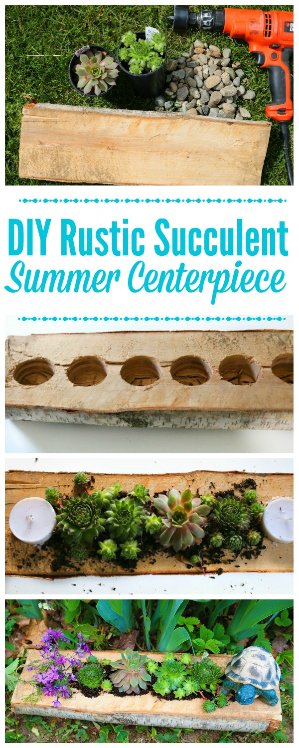 How to Make a DIY Succulent Centerpiece for your table