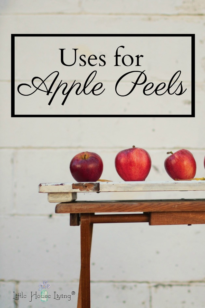 Waste not, want not! Use every bit of the apple, even the peelings with these creative uses for apple peels. #wastenot #applerecipes #apples #frugalrecipe #useitup