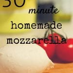 30 Minute Homemade Mozz