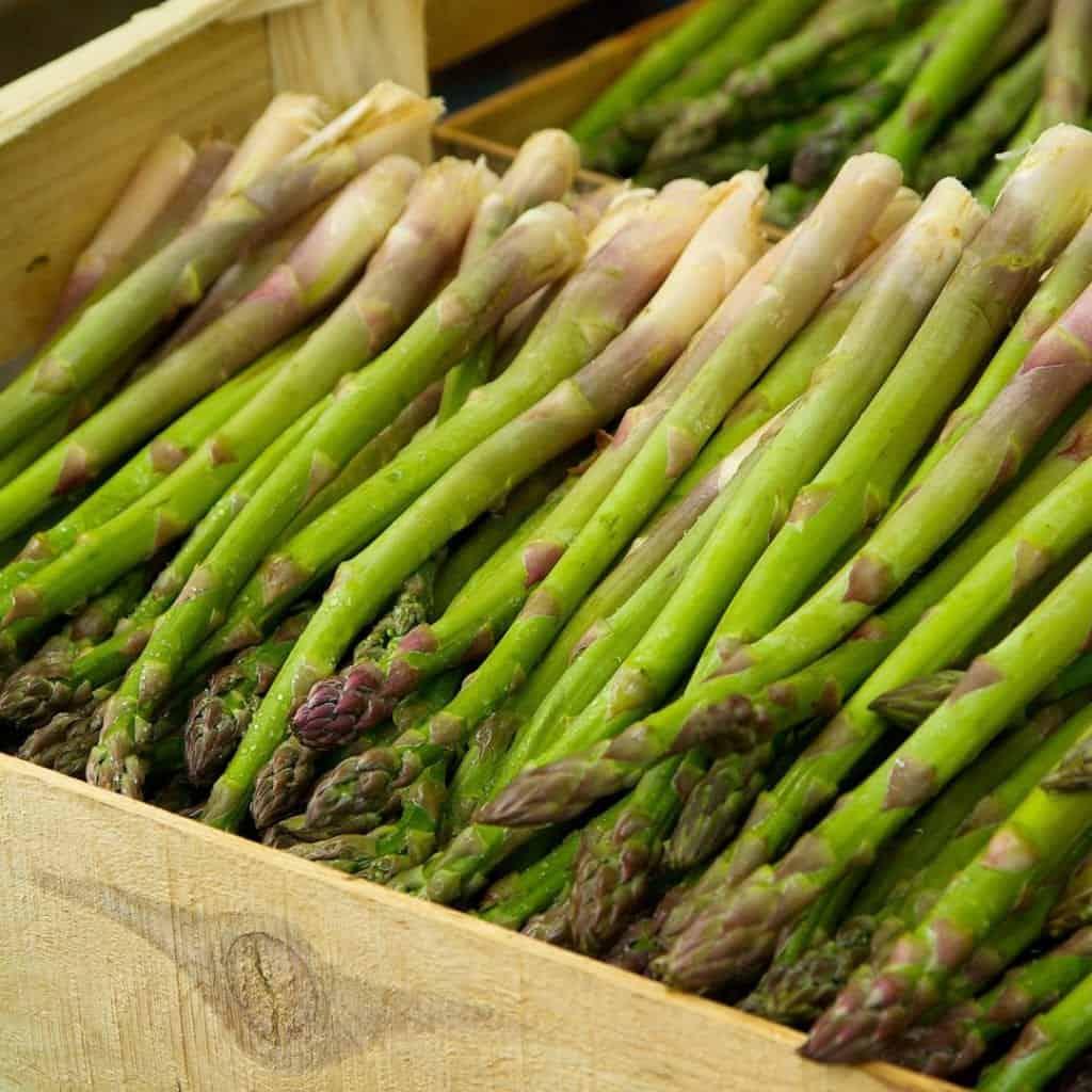 10 Springtime Asparagus Appetizer Recipes