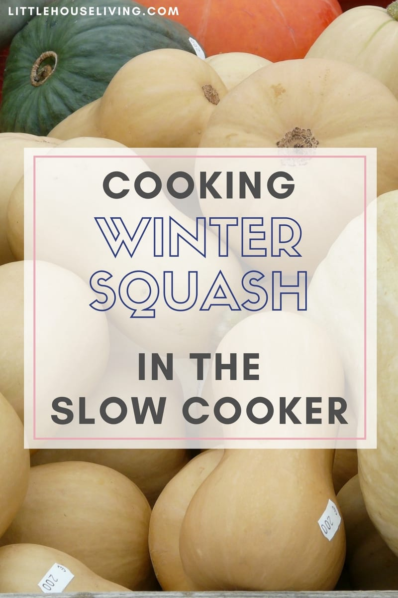 Cooking Winter Squash In The Slow Cooker
