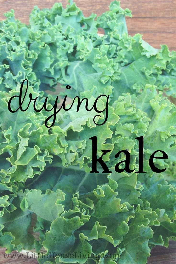Drying Kale