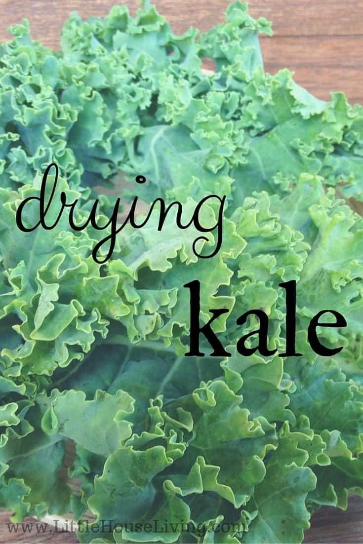 Drying Kale