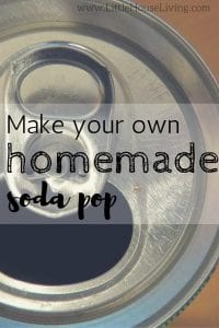 Make Your Own Homemade Soda Pop