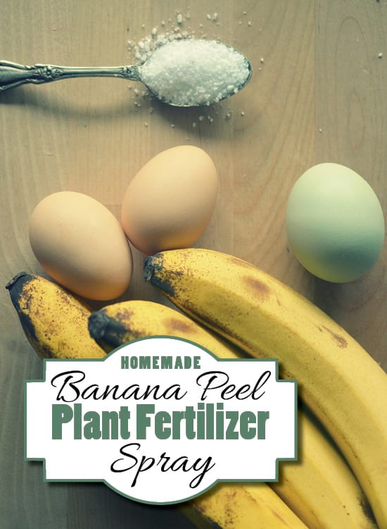 Banana Peel Fertilizer Spray