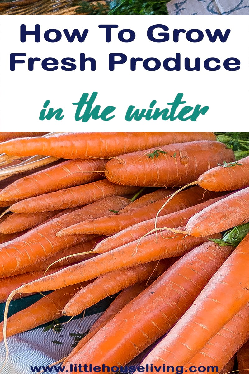 How to Grow Fresh Produce in the Winter