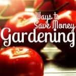Ways to Save Money Gardening