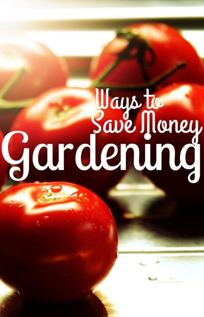 Ways to Save Money Gardening