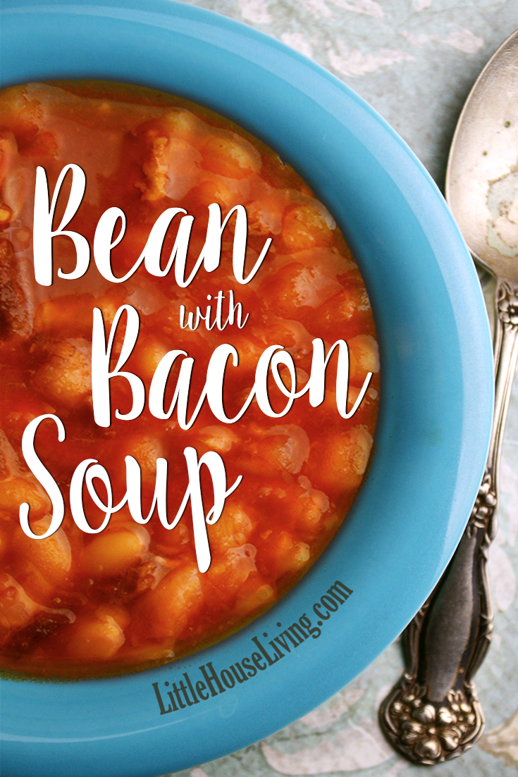 This hearty & affordable bacon with bean soup recipe is perfect for keeping you warm and filling you up on a cold day!