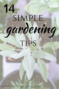 14 Simple Gardening Tips