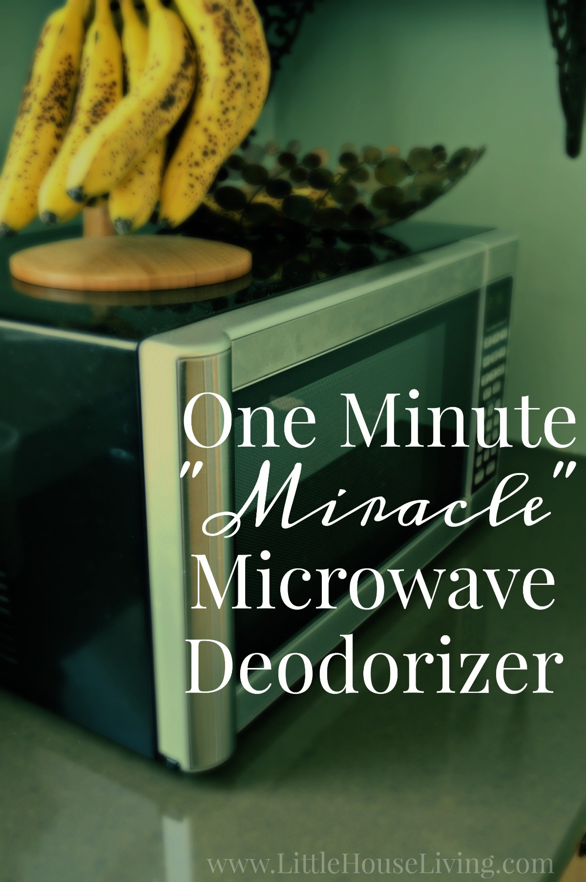 One Minute Miracle Microwave Deodorizer