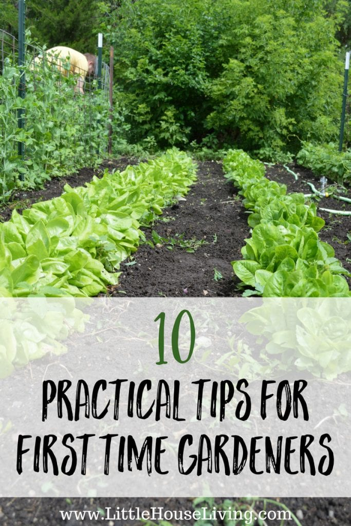 Ready to start a garden for the first time? I know it can be overwhelming! Here are some practical tips for first time gardeners that you should know.