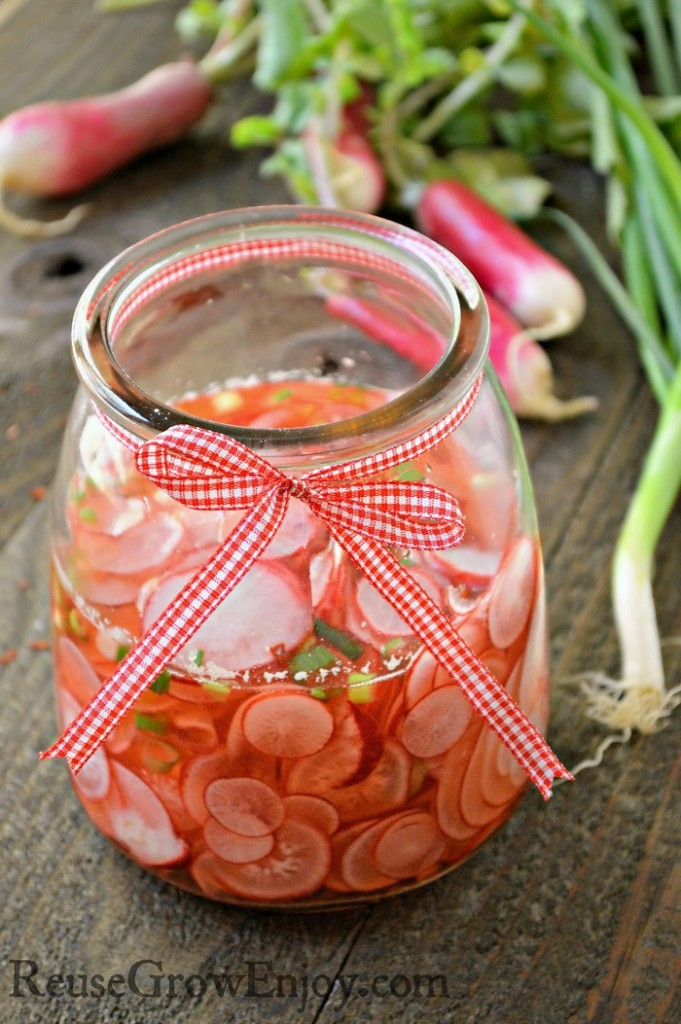 Have radishes growing in your garden? Pickle them!