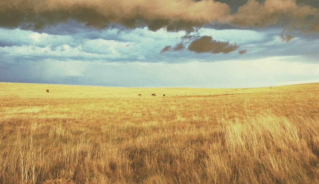 A South Dakota Prairie Story Part 1 (Anna Tells Mary's Story)