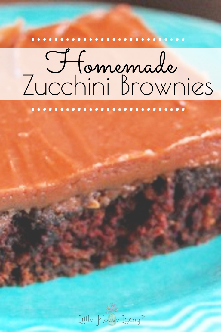 Need a delicious treat with hidden veggies? These Zucchini Brownies are the best! They only need a few basic ingredients and your family will want you to make more and more. #zucchinibrownies #zucchinirecipes