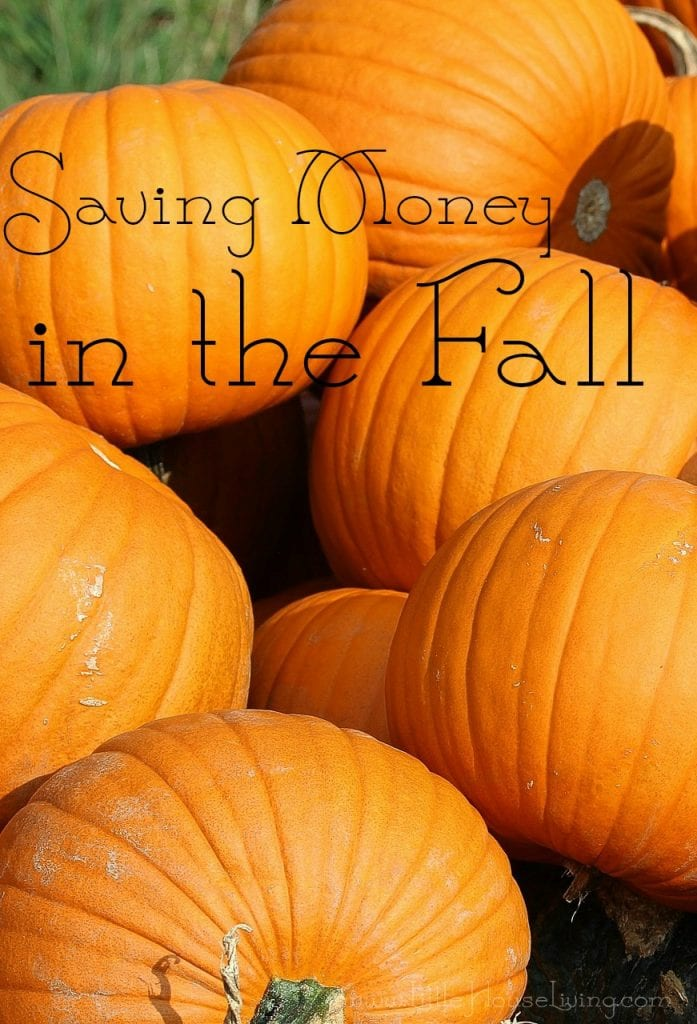 Saving Money in the Fall