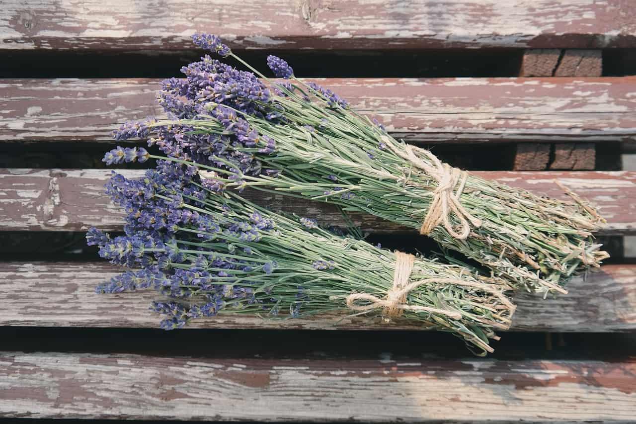Lavender Hair Rinse