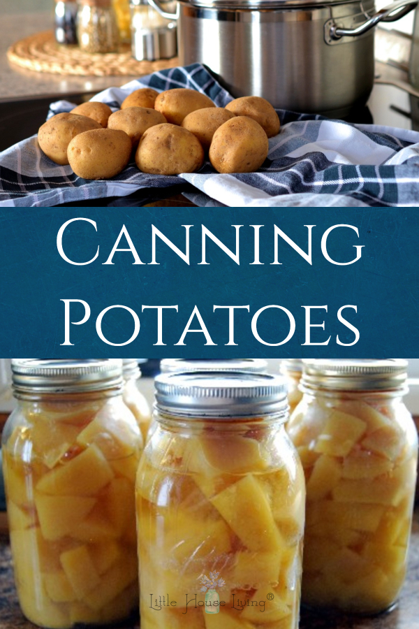 Have more potatoes than you can use before they will go bad or just want to have some ready-made potatoes for soups and meals? Canning Potatoes is the way to go! #makeyourown #preserving #canningpotatoes #canning
