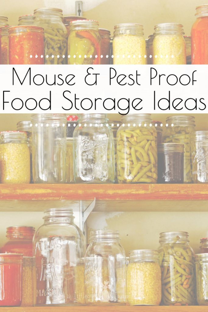 Are mice or other pests invading your hard-earned food storage? Protect your pantry from unwanted pests with these Mouse Proof Food Storage Ideas. #foodstorage #pestfree #miceprooffoodstorage #protectyourpantry #storingbulkfoods