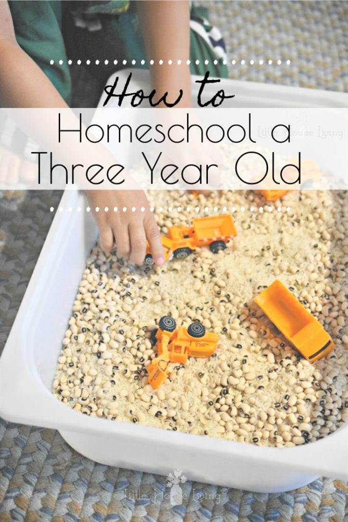Homeschooling with a Toddler is no small feat but it can be done! Here are a few simple ideas that will help keep your little one occupied during school. #homeschool #homeschooling #homeschoolmom #homeschoolingwithatoddler #preschool #toddlerschool