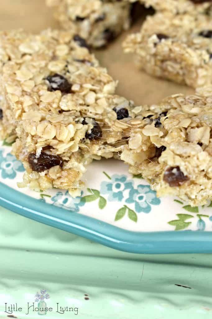 Easy Oatmeal Raisin Granola Bars
