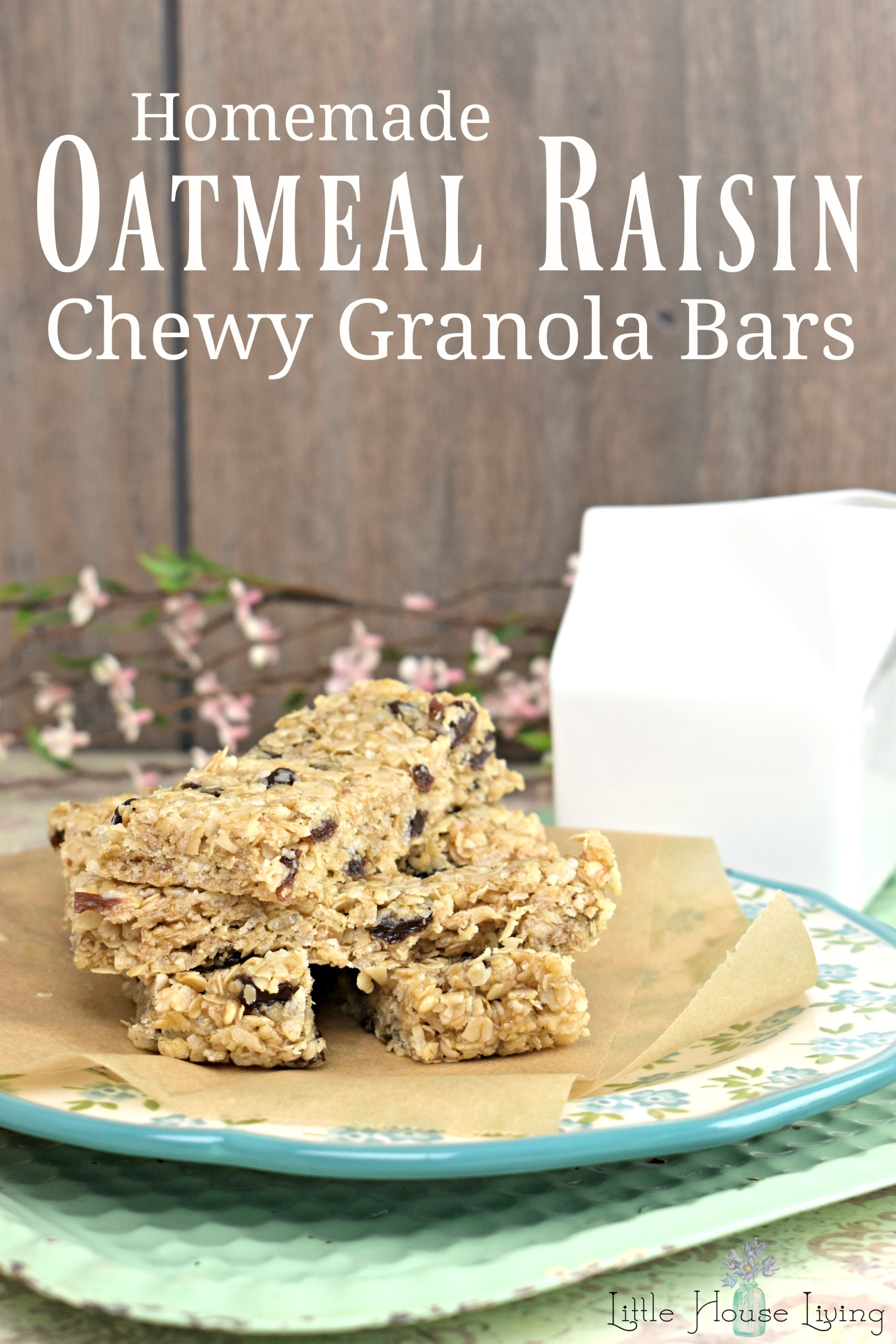 Enjoy making your own homemade chewy granola bars with this Oatmeal Raisin Granola Bars recipe. 