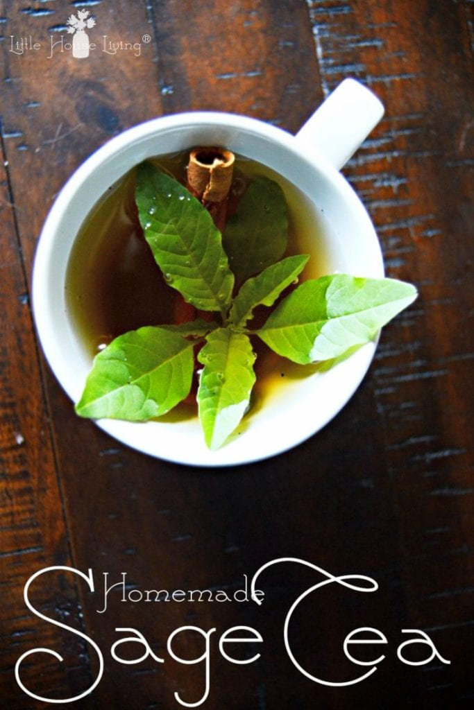 Are you looking for something warm and delicious to drink this winter? Learn how to make sage tea with this easy recipe enjoy all of its many benefits. #homemadesagetea #sagetea #homemadetea