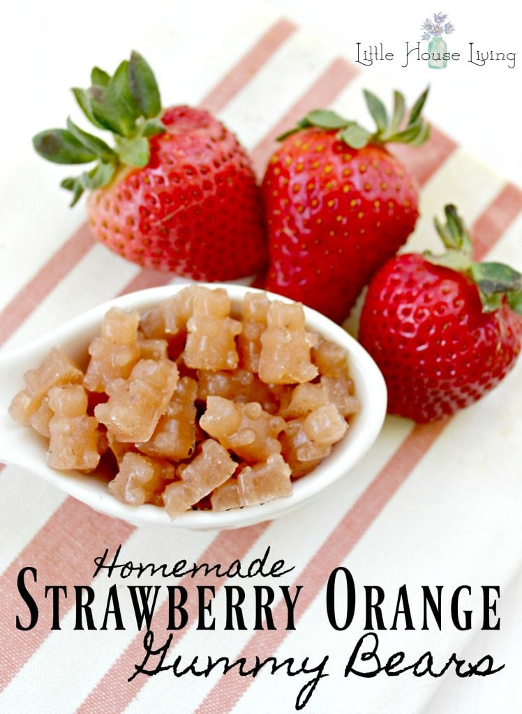 Looking for a wonderful naturally sweetened nutritious Gummy Bears recipe? You are going to love this recipe for Strawberry Orange Healthy Homemade Fruit Snacks below. #homemade #fruitsnacks #snacks #healthysnack #homemadefruitsnacks #gummybears