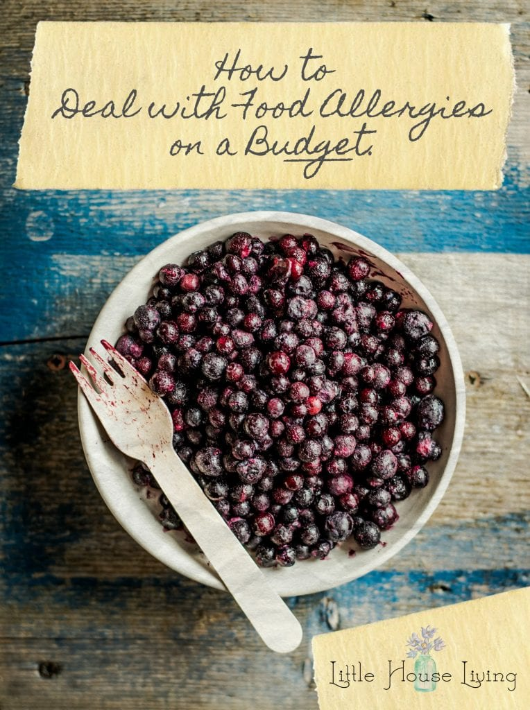 Dealing with Food Allergies on a Budget