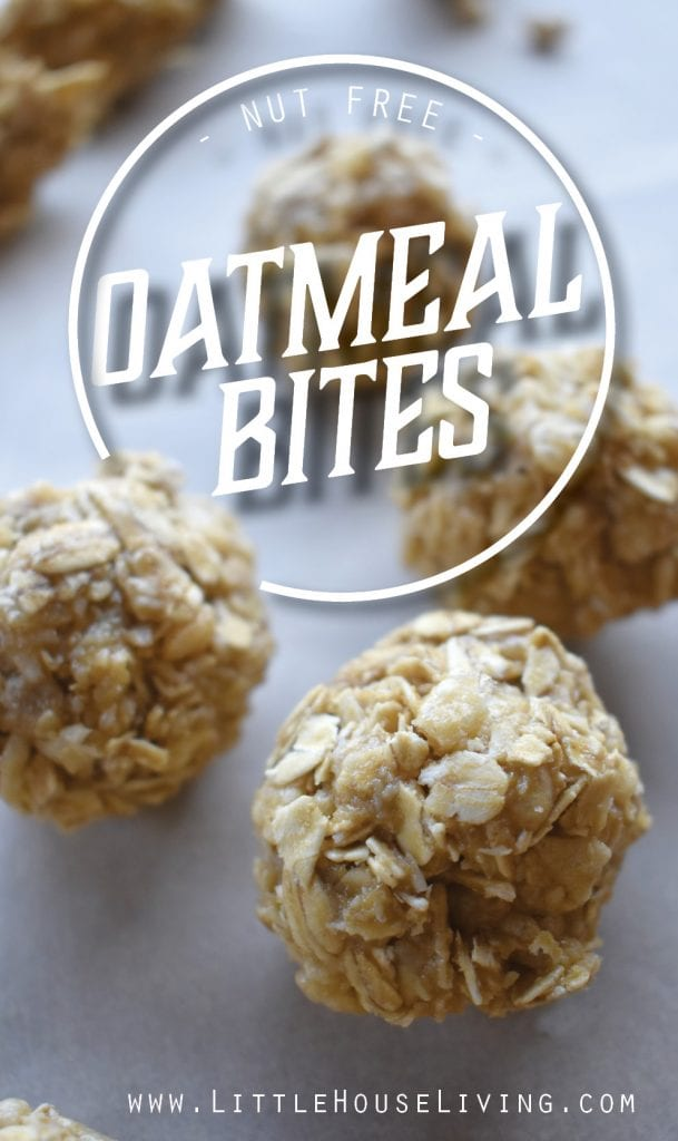 Your entire family will love these little no nut Oatmeal Bite recipe, plus this recipe includes a free printable kids recipe so that you can make it together! #kidsrecipe #homeschool #kidscooking #protein #healthyrecipes #easyrecipes #snackrecipes #allergenfriendlyrecipes
