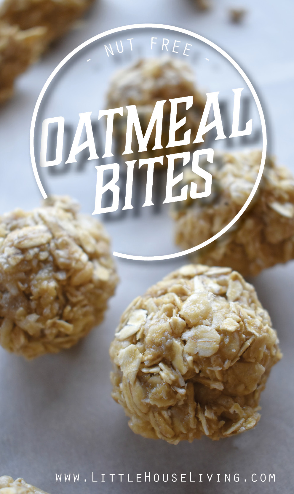 Your entire family will love these little no nut Oatmeal Bite recipe, plus this recipe includes a free printable kids recipe so that you can make it together! #kidsrecipe #homeschool #kidscooking #protein #healthyrecipes #easyrecipes #snackrecipes